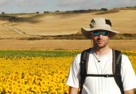 Many sunflowers on the Meseta