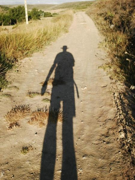 My shadow's the only one that walks beside me...
